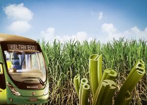 Der große südamerikanische Automobil-Zulieferer Autotravi beliefert den brasilianischen Bus-Hersteller Marcopolo mit Fenster-Gummidichtungen aus bio-basiertem Ethylen-Propylen-Dien-Kautschuk (EPDM) Keltan Eco 5470 von LANXESS. Dieser witterungsbeständige Synthesekautschuk besteht zu 70 Prozent aus Ethylen, das aus Zuckerrohr gewonnen wird, und überzeugt durch ein Eigenschaftsprofil, das dem von konventionellem EPDM in nichts nachsteht (Foto: Lanxess)