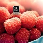 Pal Plast: App-Premiere auf der Fakuma