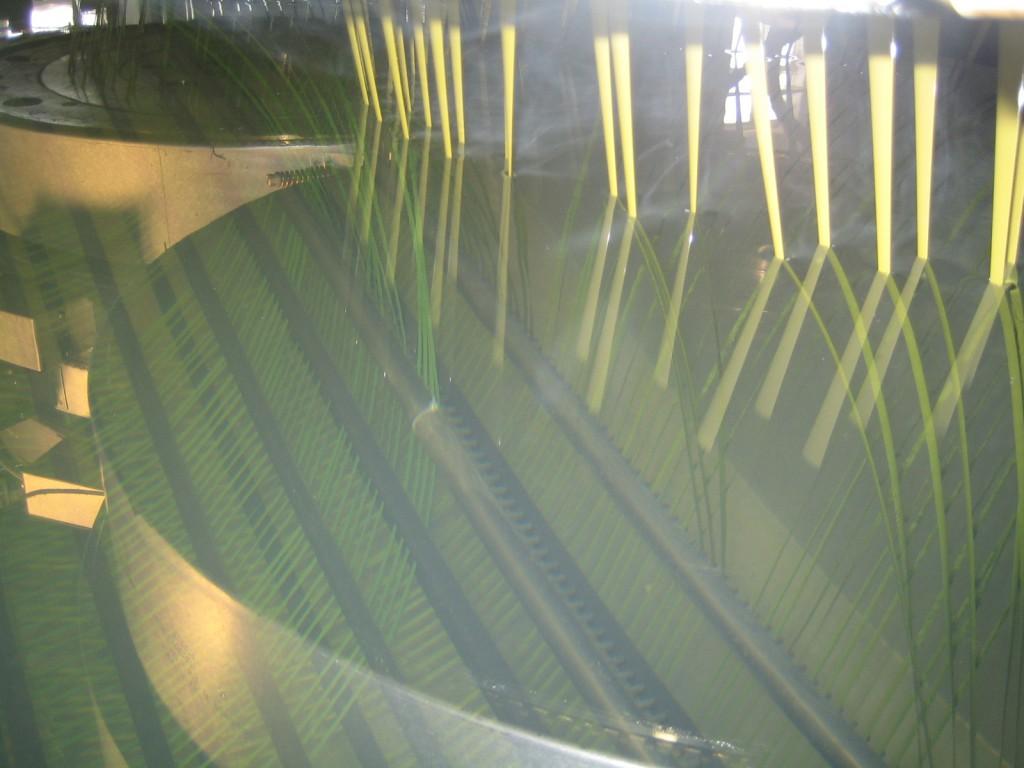 Extrusion der Endlosfäden zur Herstellung von Kunstrasen mit höchsten Qualitätsstandards mit Reimotec-Monofilamentanlagen (Foto: Reimotec)