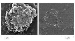 Elektronenmikroskopische Aufnahmen von Kohlenstoff-Nanoröhren (CNTs) im agglomerierten (links) und dispergierten Zustand (rechts). (Foto: Lanxess)