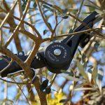 Domo: CF-verstärktes PA für elektrische Baumschere